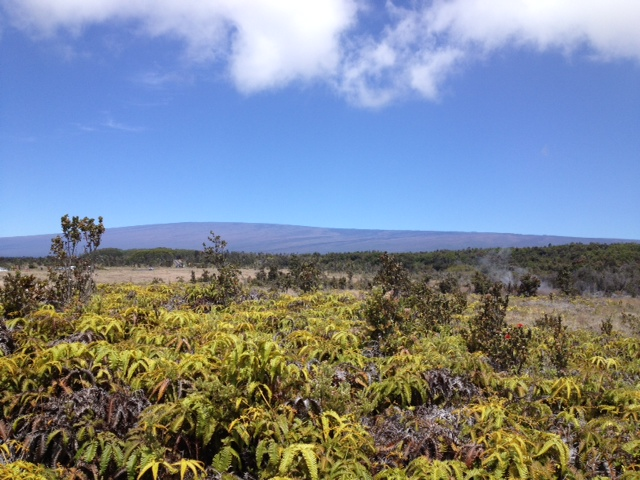 キラウエア火山のトレイル 続き